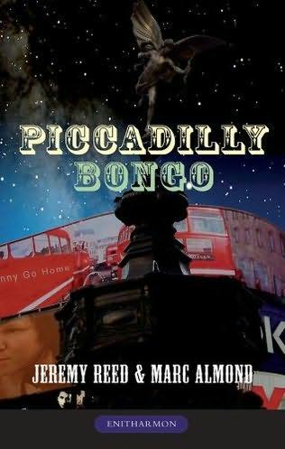 piccadillybongo
