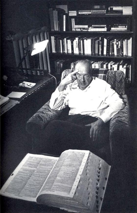 nabokov essays Vladimir nabokov (1899-1977) a more than 35 scholarly essays on nabokov, both original and previously published criticism by some of the best known nabokov.