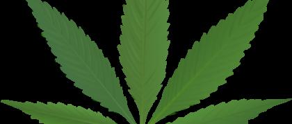 Weed-tumblr-cannabis_weed_leaf_by_samp127-d6i2sdw
